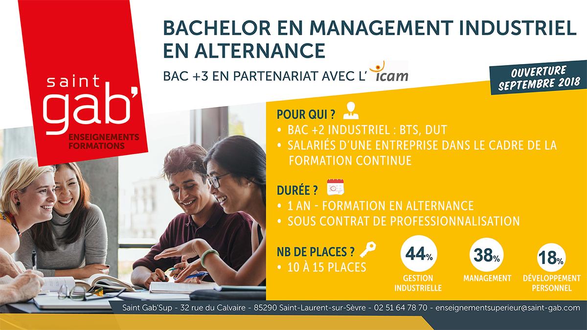 Visuel Bachelor site web